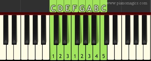 C Major Scale - What is a scale in music